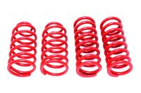 1979-2004 Mustang Lowering Springs