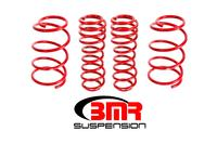 2007-2014 Shelby GT500 Lowering Springs