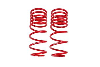 SP092 - Lowering Springs, Rear, 1.25